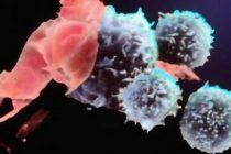Bolnavii de cancer au dreptul la medicamente noi