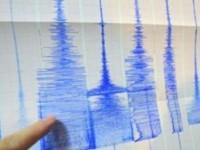 Cutremur de 4,9 grade pe scara Richter in Vrancea