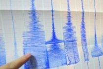 Cutremur in judetul Buzau de 3,9 grade pe Richter. Date INFP