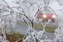 METEO: Temperaturi record pentru aceasta perioada a anului