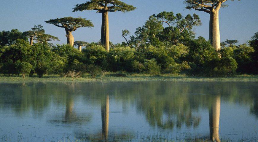Madagascar, aventura exotica care iti schimba viata