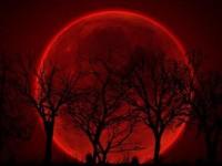 SUPER LUNA. Pe 14 noiembrie, luna va fi mai cel mai aproape de Pamant in Secolul 21