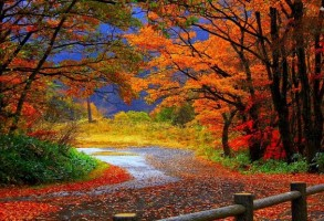 Cum va fi vremea in octombrie 2018. Prognoza meteo actualizata de ANM pentru a doua luna de toamna