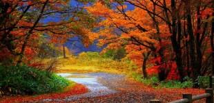 VREMEA IN SEPTEMBRIE: Cum va fi vremea in primele zile din toamna 2014. Prognoza pana pe 14 septembrie