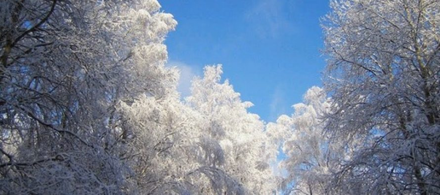 METEO. ANM a emis o informare de ninsori si viscol valabila pana in 10 ianuarie
