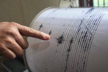 Cutremur in judetul Buzau de 3.5 pe Richter produs azi-noapte