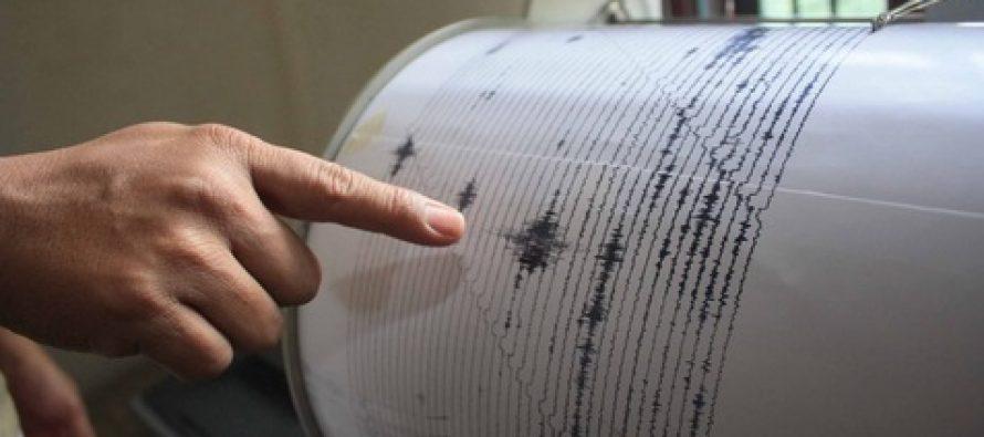 Cutremur in zona Vrancea cu magnitudinea 4,5 pe scara Richter, informeaza INFP