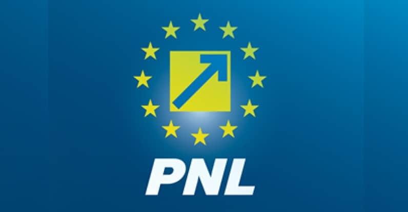 Programul de guvernare al PNL - Comunicat de presa