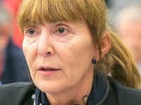 Monica Macovei: Darius Valcov intareste fratia penalilor din PSD, trebuie sa plece prin demisie sau demitere