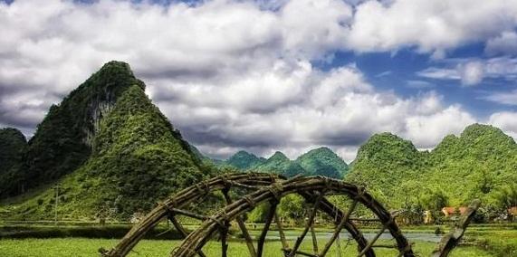 In Vietnam, salvarea padurii vine de pe Facebook
