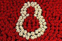 8 Martie, Ziua Internationala a Femeii – Cand a fost sarbatorita pentru prima data Ziua Femeii