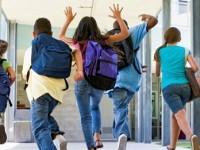 Programe scolare noi pentru gimnaziu si liceu din 2017. Vizati, elevii de clasele a V-a si a IX-a
