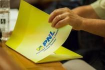 Raluca Turcan, PNL: Viitorul Guvern trebuie ferit de orice vulnerabilitati. Romania nu trebuie sa dea semnale confuze sau contradictorii