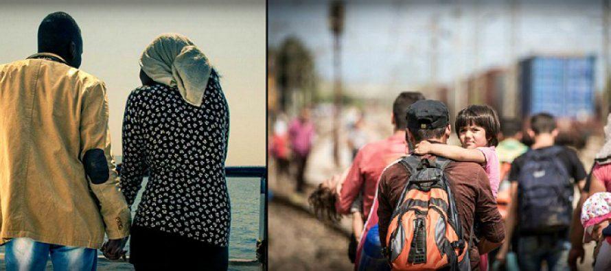 Romania isi intareste masurile de securitate la frontiera cu Serbia pentru a evita riscurile de atragere intr-un flux migrationist