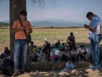 Cati imigranti va primi Romania. Anunt facut de Palatul Cotroceni
