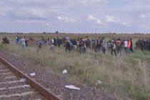 Sute de refugiati au fortat granita dintre Serbia si Ungaria si se indreapta spre nord-est. VIDEO