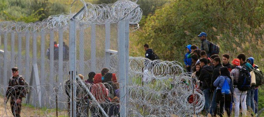 Ungaria vrea gard de sarma ghimpata la granita cu Romania