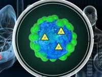 Tratamentul care vindeca cancerul, descoperit din greseala. 90% din tumori ar putea fi tratate datorita malariei