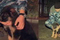 Rusia trimite in Franta un cadou neasteptat: Cainele Dobrynia il va inlocui pe Diesel. VIDEO