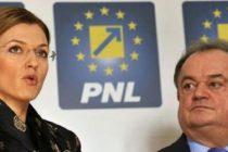 Dizolvarea Parlamentului si alegerile anticipate, mandatul cu care PNL va merge la consultarile de la Cotroceni