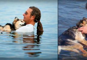 Povestea emotionanta a unui american care si-a dus in fiecare zi cainele sa doarma in lac. VIDEO