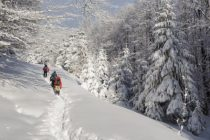 Zeci de turisti cazati in zona Pestera – Padina din Bucegi nu pot pleca acasa, drumul este blocat de troiene