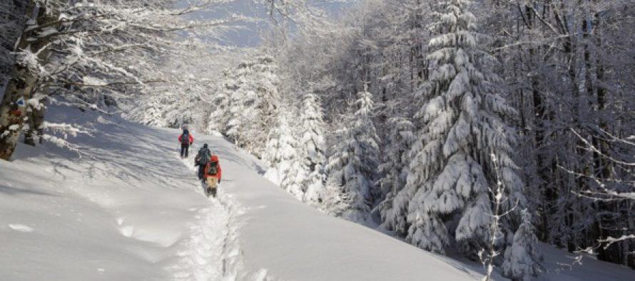 Pericol de avalansa in muntii Fagaras si Bucegi ca urmare a ninsorilor abundente din ultimele ore