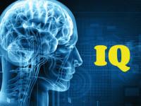 Esti geniu sau om obisnuit? Testul MENSA iti spune cat esti de inteligent