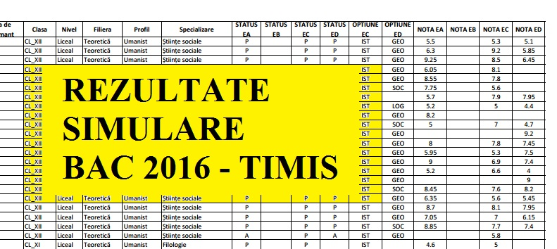 REZULTATE SIMULARE BAC 2016 TIMISOARA. ISJ Timis a publicat notele la Simulari Bac 2016