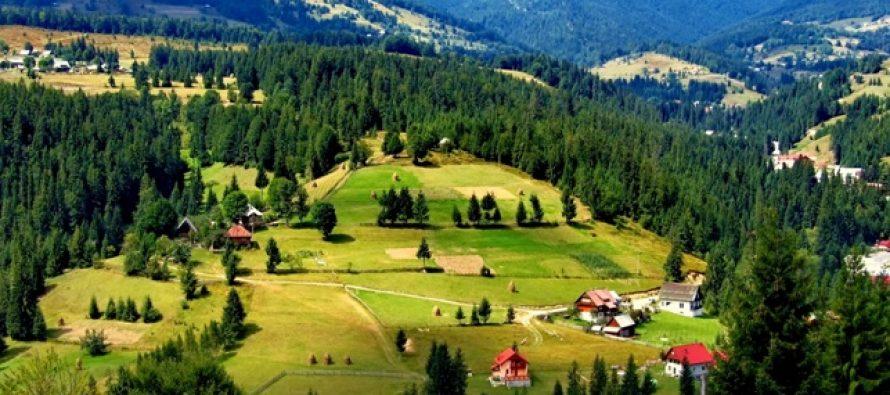 Numarul turistilor din Romania a crescut in aprilie 2017 cu 11,5% fata de aprilie 2016