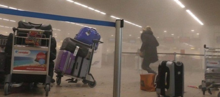 Cristina Calintaru, romanca ranita in explozia de la Bruxelles, este din Constanta si lucreaza la Autoritatea Navala