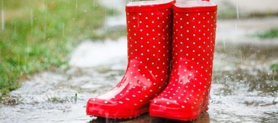 METEO – Vremea continua sa fie capricioasa pana pe 1 aprilie, va ploua in aproape toata tara