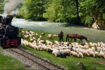 In Romania, turistii cauta ce nu au acasa! Ce s-a schimbat in turismul romanesc si cum arata viitorul vacantelor pe taram mioritic