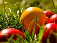 Joia Mare - Traditii si obiceiuri. Astazi se vopsesc ouale, iar crestinii care s-au spovedit se impartasesc