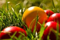 Joia Mare – Traditii si obiceiuri. Astazi se vopsesc ouale, iar crestinii care s-au spovedit se impartasesc