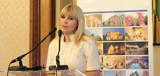 Elena Udrea a scris o carte in care vorbeste despre momentul arestarii: I-am rugat sa plece sa nu ma gaseasca politistii cu ei