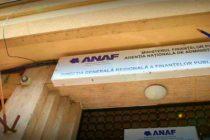 ANAF are o noua conducere, care promite reducerea numarului de declaratii fiscale si informatizarea sistemului