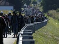 Ungaria decide prin referendum daca accepta cotele impuse de UE in privinta refugiatilor