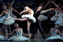 """Sankt Petersburg Classical Ballet prezinta la Bucuresti """"Lacul lebedelor"""" (12 decembrie 2016)"""