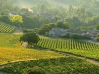 Accesarea fondurilor europene pentru agricultura, prezentata intr-o conferinta de informare la Timisoara