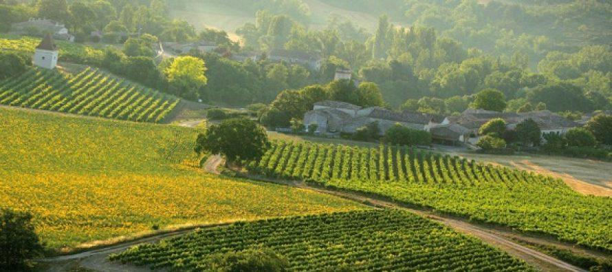 Eurostat: Romania se situeaza pe locul 5 in Europa la consumul de pesticide. Patru mari tari europene se afla in topul vanzarilor de pesticide