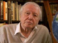 O fosila veche de 430 de milioane de ani a fost numita dupa Sir David Attenborough
