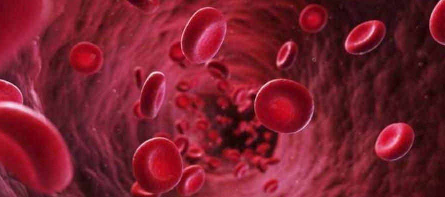 Premiera in medicina. Cercetatorii au reusit corectarea unui defect genetic in cadrul unor experimente efectuate pe embrioni umani purtatori ai unei boli ereditare grave a sangelui
