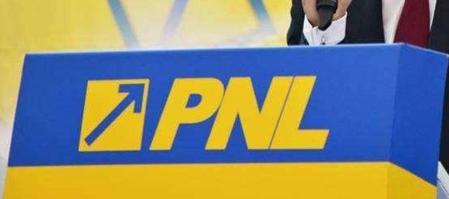 PNL s-a dezis de Daniel Zamfir. Reactia senatorului: Altul e motivul avertismentului de excludere