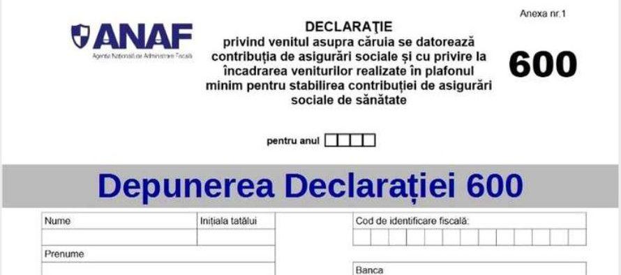 Declaratia 600 va fi unificata cu Declaratia 200 in prima sedinta de Guvern, anunta ministrul desemnat al Finantelor