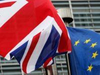 BREXIT. Tot mai multi britanici aleg sa-si ia cetatenie germana, in contextul apropiatei iesiri din UE