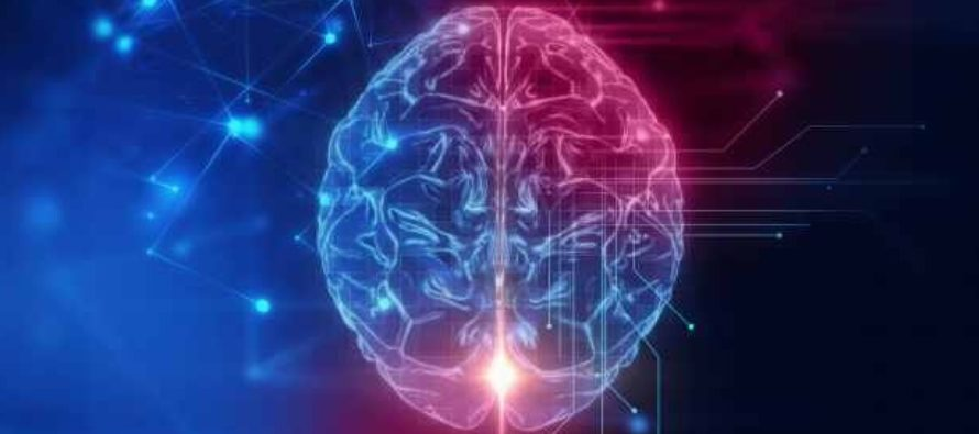 Noi perspective asupra neurobiologiei mortii au fost publicate de cercetatorii de la Universitatea de Medicina din Berlin