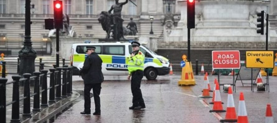Alerta de securitate la Londra, un barbat a fost arestat la Palatul Buckingham de Politia Metropolitana