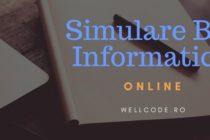 Bacalaureat 2018. Simularea online la Informatica, pe o platforma dezvoltata de o echipa de IT-isti romani cu internship la Google si Facebook