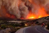 Incendii devastatoare in Grecia. Zeci de morti si de raniti, Guvernul a decretat trei zile de doliu national. Marturii din infern